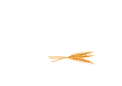 FiveOaks_logo_247x176